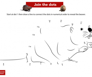 Beaver Trust - Join the dots