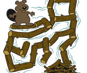 Beaver Trust - Maze